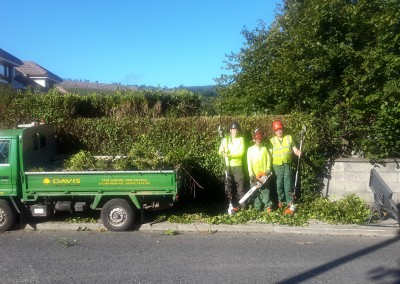 Davis Tree Services - Some Of the Team
