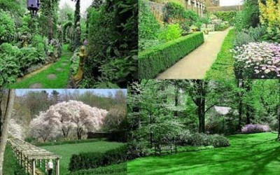 garden maintenace