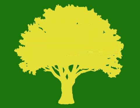 Davis Tree Services
